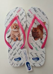 Chinelo Cats