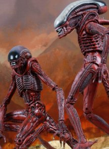 Aliens Genocide Big Chap & Dog Alien (2 pack) - Action Figure