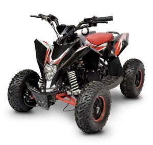 Mini Quadriciclo Fun Motors Avalanche 90 cc