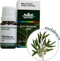WNF Óleo Essencial de Tea Tree / Melaleuca 10ml